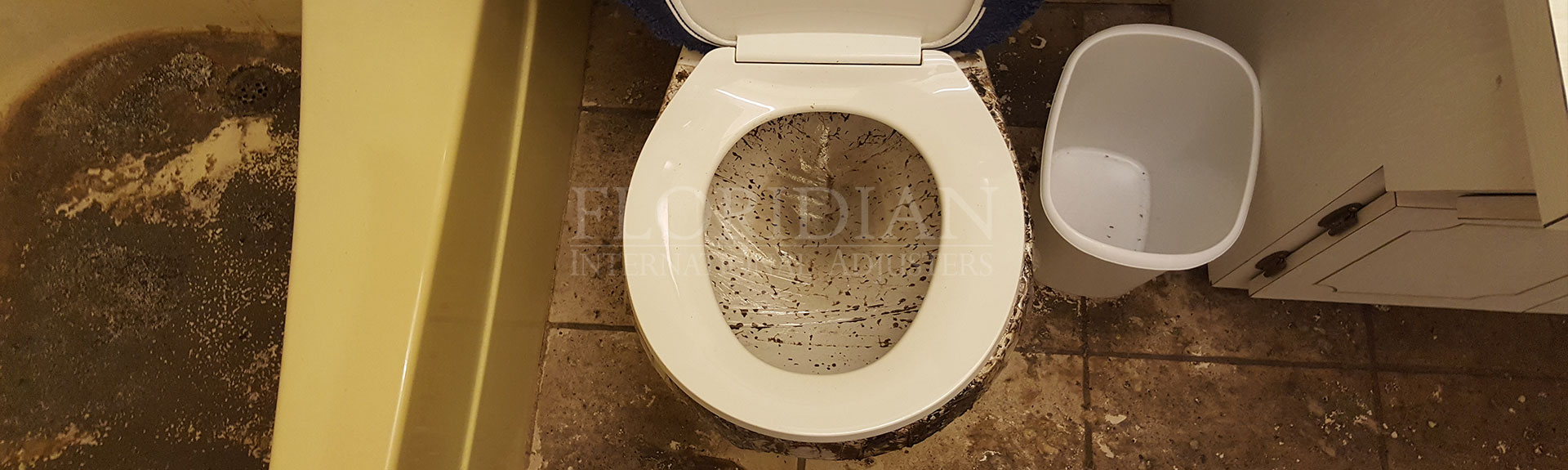 Plumbing insurance claim