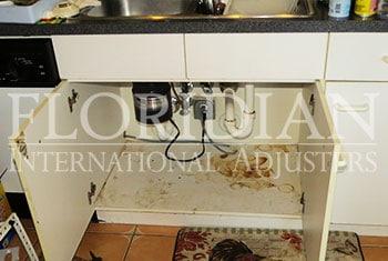 Kitchen Leaks