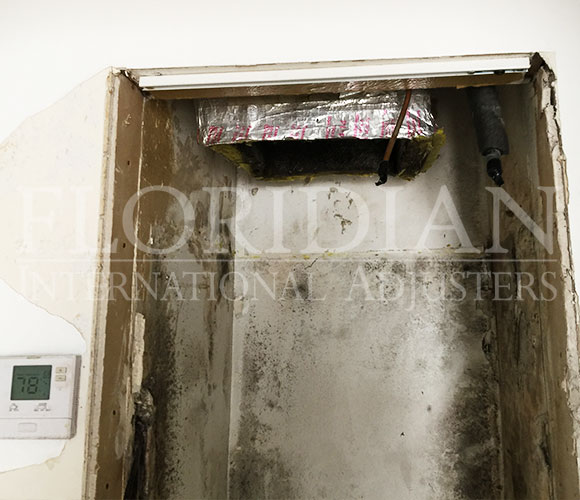 Hvac Leak Mold