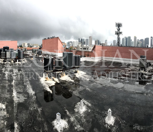 Roof Damage In Miami